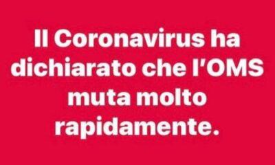ricerca scientifica: il coronavirus e l'oms